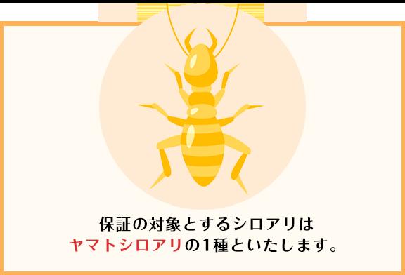 保証の対象とするシロアリはヤマトシロアリの1種といたします。